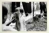 artists/Fearon, Greg/thumb/Fearon, Greg - Separation.jpg