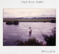 artists/Paoli, Melvin/thumb/Paoli, Melvin - Rice Paddy.jpg