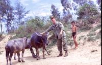 artists/Schmidt, Ramon/thumb/Schmidt, Ramon - American Soldier with Local Boy and Water Buffalo.jpg